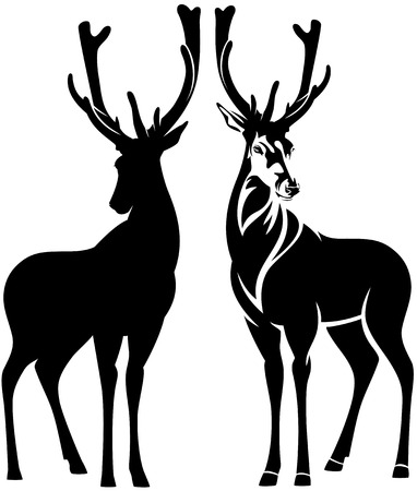 Illustration pour standing deer outline and silhouette - beautiful wild animal vector design - image libre de droit