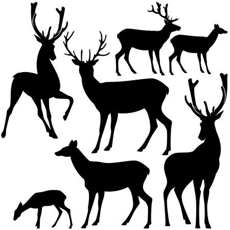 Illustration pour deer black and white silhouette set - vector collection of wild animals detailed outlines - image libre de droit