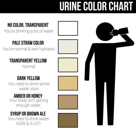 Illustration pour Urine color chart icon symbol sign pictogram info graphic - image libre de droit