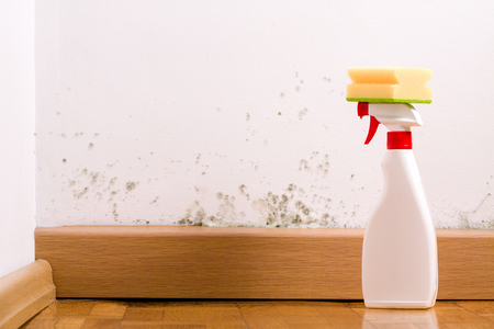 Photo for Spray to remove mould on the wall in house. Remove the mold problem. - Royalty Free Image