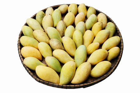 Photo for Piles of mango ripe yellow gold in the threshing basket on white background - Royalty Free Image
