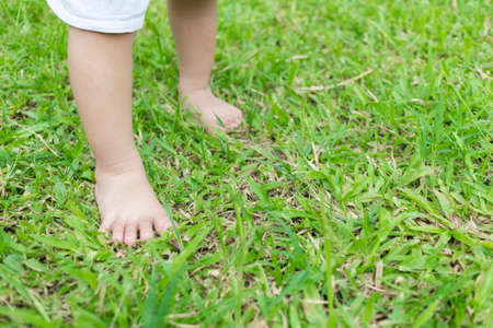 Foto für Baby's foot stepping on the grass in the morning with copy space. - Lizenzfreies Bild