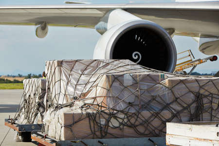 Photo for Loading of cargo to the freight aircraft  - Royalty Free Image