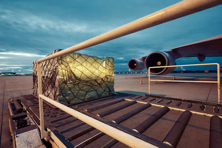 Photo for Loading of cargo to the freight aircraft. - Royalty Free Image
