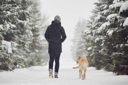 Foto de Man walking with his yellow labrador retriever in winter landscape - Imagen libre de derechos
