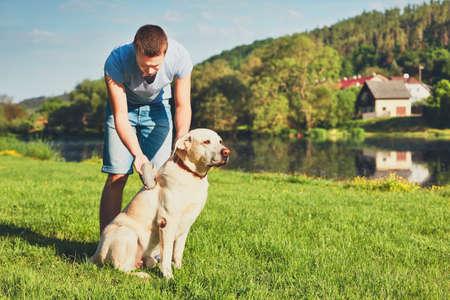 Photo pour Regular caring for dog. Young man brushing his yellow labrador retriever. - image libre de droit