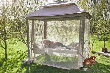 Springtime sunny day on the garden. Man sleeping on the swing.