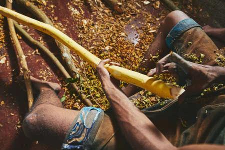 Photo pour Hands of the man preparing cinnamon sticks. Manual worker in Sri Lanka. - image libre de droit