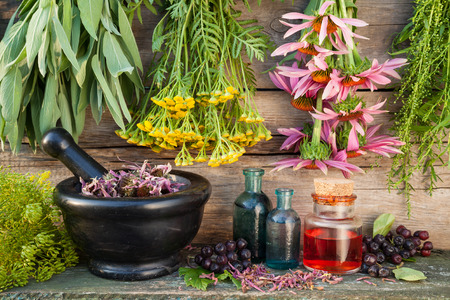 Photo pour bunches of healing herbs on wooden wall, mortar, bottles and berries, herbal medicine - image libre de droit