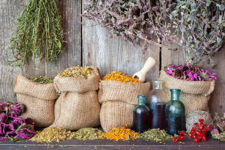 Photo for Healing herbs in hessian bags and bottles of essential oil near rustic wooden wall, herbal medicine. - Royalty Free Image