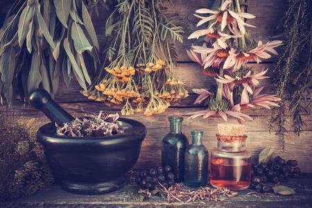 Foto de Vintage stylized photo of  healing herbs bunches, black mortar and oil bottles, herbal medicine. - Imagen libre de derechos