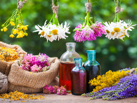 Foto de Healing herbs bunches, bottle of oil or tincture, hessian bags with dried marigold and clover. Herbal medicine. - Imagen libre de derechos