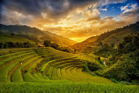 Photo for Rice fields on terrace in rainy season at Mu Cang Chai, Yen Bai, Vietnam. Rice fields prepare for transplant at Northwest Vietnam - Royalty Free Image