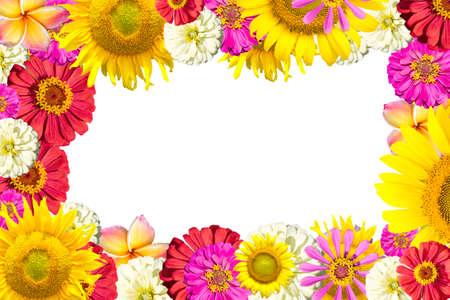 Photo pour mix flowers frame - image libre de droit
