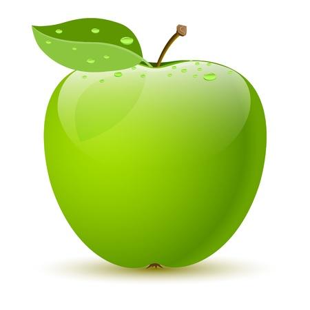 Photo pour Illustration of a green apple on white background. Vector. - image libre de droit