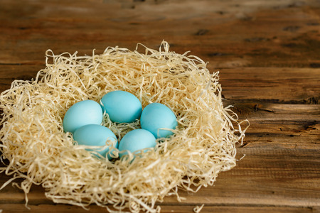 Photo for Easter eggs in the nest. It can be used as a background - Royalty Free Image