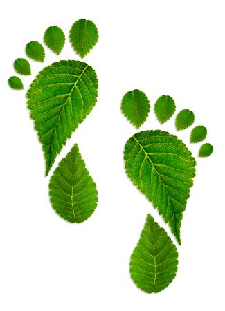 Foto de Trace foot from green leaves - Imagen libre de derechos