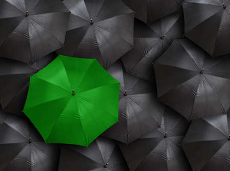 Photo for concept for leadership with many blacks and green umbrella  - Royalty Free Image