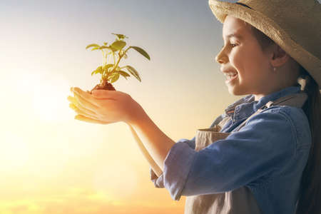Foto de Cute little child girl with seedlings on sunset background. Fun little gardener. Spring concept, nature and care. - Imagen libre de derechos