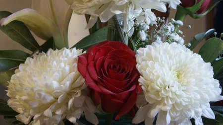 Foto de beautiful flowers - Imagen libre de derechos