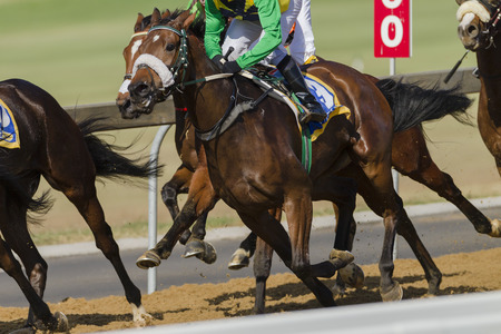 Photo for Horse racing closeup action of jockeys horses on race track - Royalty Free Image