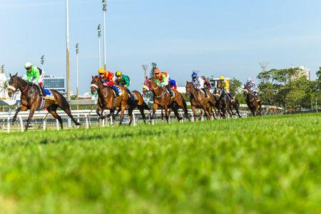 Photo pour Horse racing animals  jockey's track action photo - image libre de droit