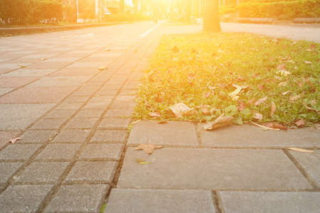 Photo for The scenery of park in sunny day. - Royalty Free Image