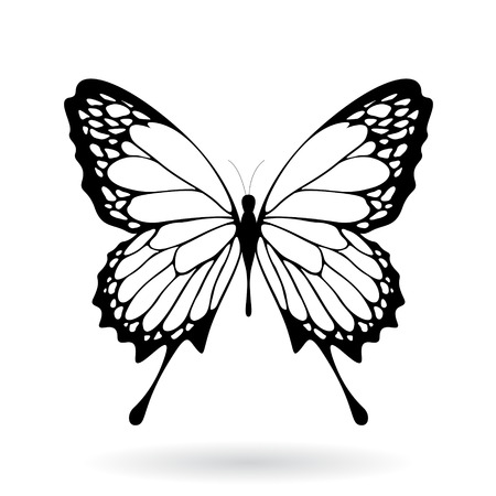 Illustration pour Vector Illustration of a Black Butterfly Silhouettey isolated on a white background - image libre de droit