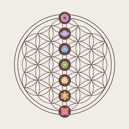 Ilustración de Zen concept illustration, seven main chakra icons placed on flower of life sacred geometry design. - Imagen libre de derechos