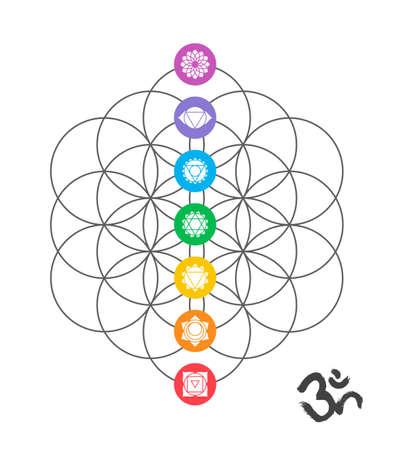 Ilustración de Colorful icons, main chakras on flower of life. Sacred geometry illustration with handmade om calligraphy decoration. - Imagen libre de derechos
