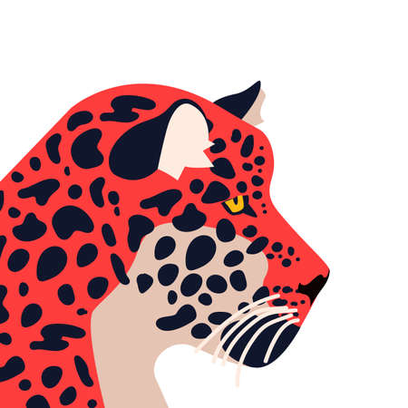 Illustrazione per Wild jaguar animal illustration. Hand drawn tiger or feline on isolated white background.  - Immagini Royalty Free