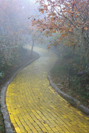 Foto de Yellow brick road winding through the forest at Beech Mountain, North Carolina  - Imagen libre de derechos