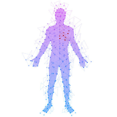 Foto per Abstract model of man with points and lines. Vector background - Immagine Royalty Free