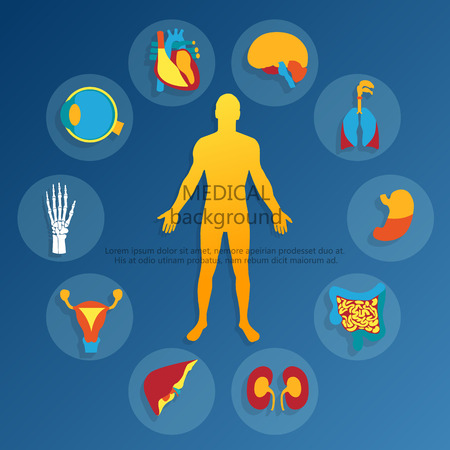 Ilustración de Medical background.Human anatomy. - Imagen libre de derechos