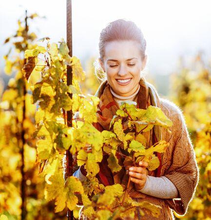Foto de Happy young woman standing in autumn vineyard and looking on branch - Imagen libre de derechos