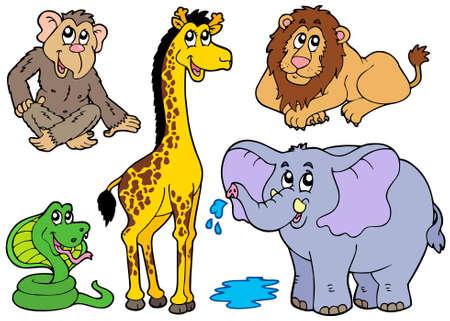 Various African animals - illustration.