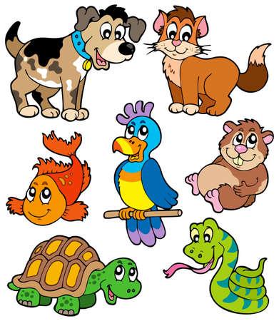 Pet cartoons collection