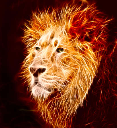 A big male Asiatic lion with lapping flames