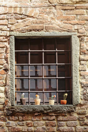 Window with potted plants in Certaldo Florence, Tuscany, Italy