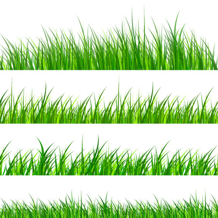 Illustration pour Green grass samples isolated, vector illustration. - image libre de droit