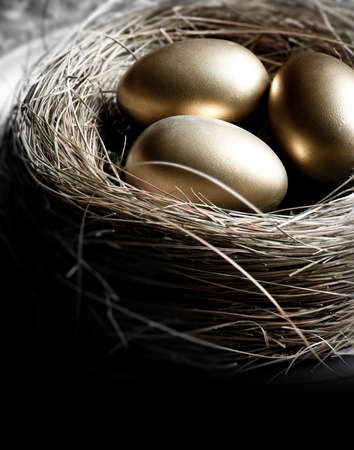 Foto de Creatively lit bird nest with gold eggs, shot in natural light. Concept image for pension investments, finance, savings or retirement planning. Accommodation for copy space. - Imagen libre de derechos