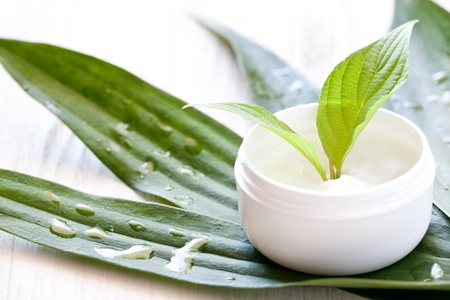 Photo for face cream in a jar with green leaf  - Royalty Free Image