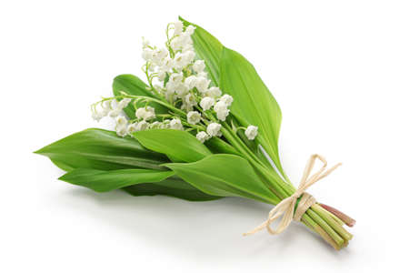 Photo pour lily of the valley posy isolated on white background - image libre de droit