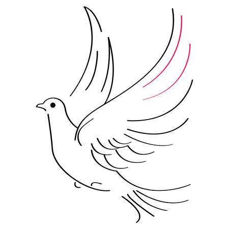 Illustration pour Vector illustration of flying dove on white background - image libre de droit