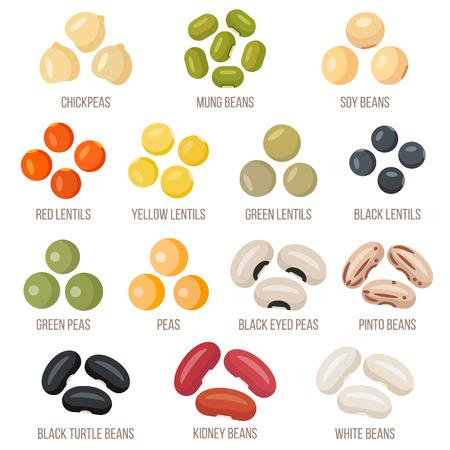 Illustration for Set of legumes, design illustration. - Royalty Free Image