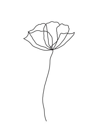 Illustration pour Poppy flower line art. Minimalist contour drawing. One line artwork - image libre de droit