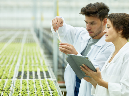 Foto de Side view of man with test tube and woman with tablet doing research of plants on agricultural plantation working in team - Imagen libre de derechos