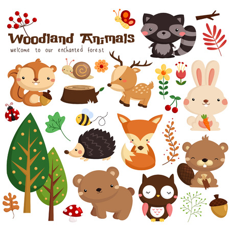 Photo pour Woodland Vector Set - image libre de droit