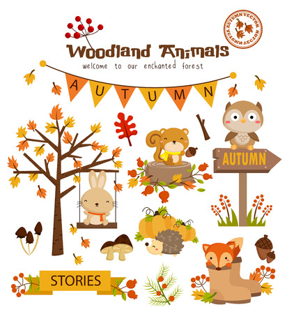 Woodland Autumn Animal Vector Set