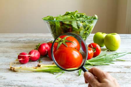 Foto de Analysing food, pesticides free vegetables - Imagen libre de derechos